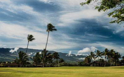 Maui, un nouveau paradis à Hawaï pour les touristes